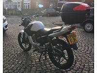 Yamaha ybr 2015 white low miles 2K great condition excellent learner/commuter bike