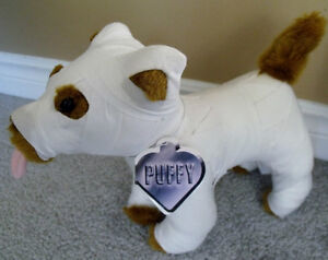 """PUFFY plush dog in full body cast """"There's something about Mary"""""""