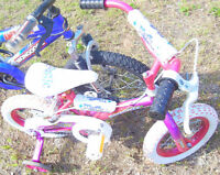 Girl`s 12 inch super cycle $20.00