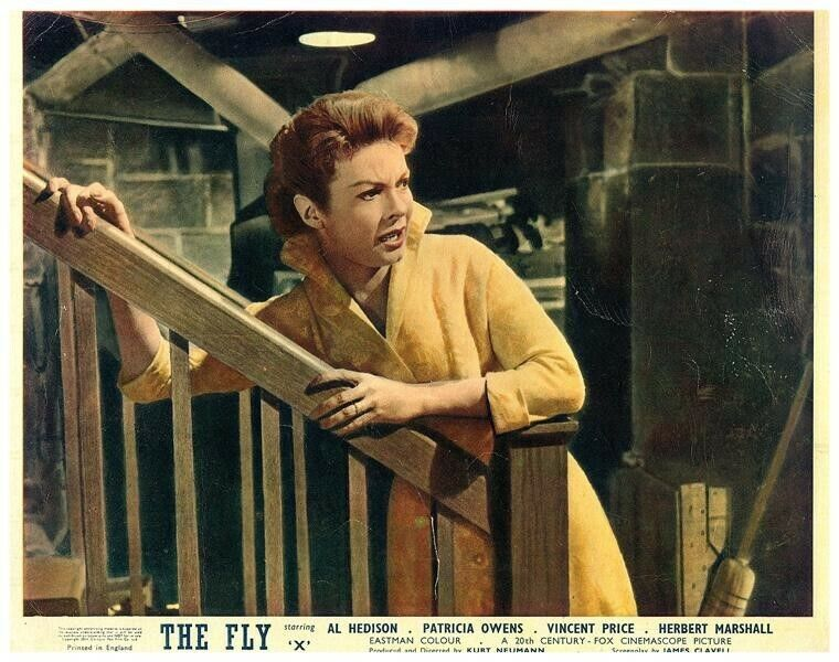 The Fly Original British Lobby Card 1958 Horror Patricia Owens Rare