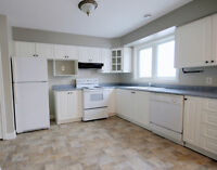 Just reduced! 0% Down payment option available