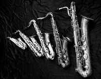Study Sax, Flute, Trumpet, Voice, Guitar, Improvisation, etc.