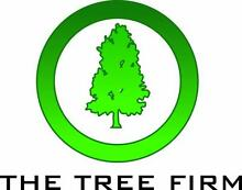 TheTreeFirm-Tree services, lopping, removal, stump, lopper West Perth Perth City Preview