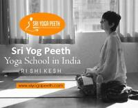 Certified Yoga Courses in India