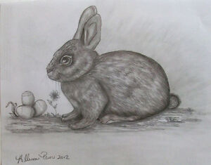 Learn how to draw Animals St. John's Newfoundland image 4