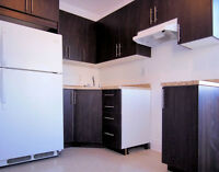NDG LARGE 4 1/2 WITH NEW KITCHEN & BATHROOM.