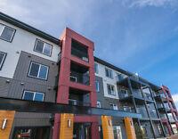 Amazing, Brand New 2 bed/2 bath condo in Windermere (Edmonton)