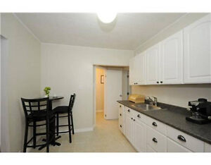 Perfect One Bedroom Apt in Westboro. Privacy. Loads of storage.