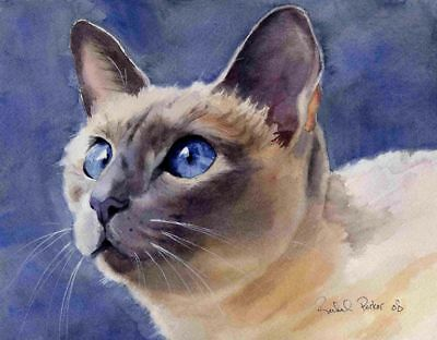Giclee Print of Siamese Cat Art Watercolor Painting Applehead lilac point