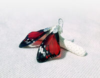 Transparent Clear Red Earrings - Butterfly Wing - Silver Plated