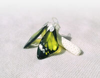 Transparent Clear Green Earrings- Butterfly Wing - Silver Plated