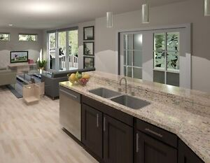Almost new Townhouse Condo in Richmond West Area