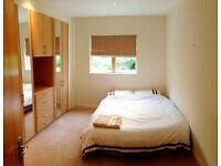 Beautiful Double Room with en-suite available in Luxury Apartment (S11)