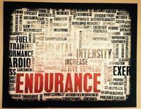 ENDURANCE BRAND NEW WALL CAVAS ART$20 GYM ROOM
