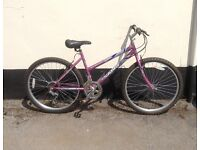 "LADIES MOUNTAIN BIKE 17"" FRAME £45"