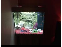 Juwel Lido 120 Litre Tropical Fish Tank