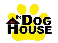 Dog Sitting Services (dog sitter) doggy day care 🐾