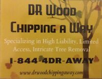 Tree Removal / Tree Services