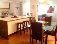 Aug 1   W.Verdun - Big loft-style  3 1/2 furnished and renovated
