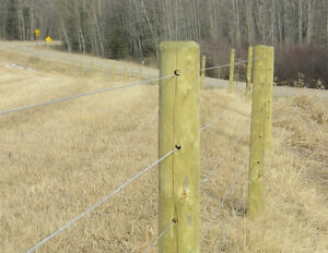 Fencing with Hi tensile wire - electric option