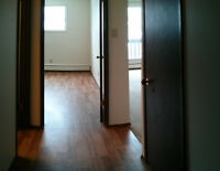 BRIGHT & SPACIOUS 1 BEDROOM APARTMENT! $100.00 OFF MARCH RENT!!