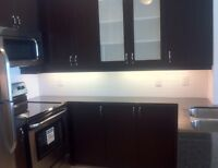 1+1 beds & 2 full baths luxury condo in DT Markham