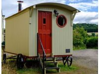 Luxury Shepherds Hut. Price reduced for qiuck sale.