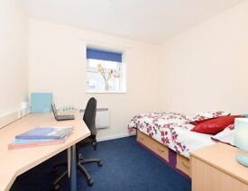 BRONZE ENSUITE ROOM FOR RENT IN WREXHAM WITH SINGLE BED, PRIVATE BATHROOM, PRIVATE ROOM