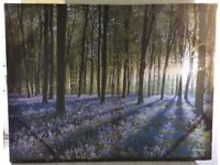 Bluebell Landscape Canvas Picture