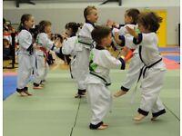 ABC Dragons, XS Taekwondo Hallglen