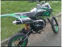 125 cc pit bike for sale
