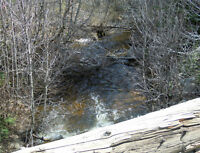 Placer gold claim on Trout Creek Behind Peachland.
