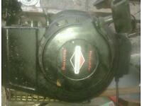 Briggs and Stratton lawn mower engine