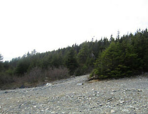 Anthonys Rd - Spaniards Bay - MLS 1101128/1101127 St. John's Newfoundland image 6