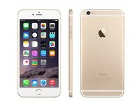iPhone 6 Gold 64GB unlocked brand new condition