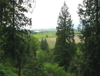 8.5 Acres of Wonderful Opportunity! Hack Brown Rd Chilliwack, BC