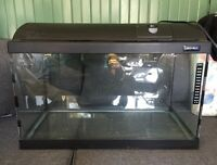60 x 30 light-glo fish tank