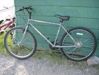 Backroads BRC bike