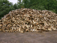 FIREWOOD FOR SALE!!! FREE CITYWIDE DELIVERY!! $190.00/CORD!!