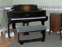 Piano Lessons - Stoney Creek Mountain