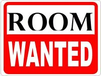 Looking for a room