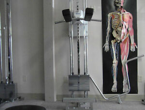 4 pulley systems,Physiotherapy,rehab Stratford Kitchener Area image 3