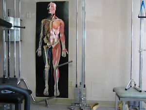 4 pulley systems,Physiotherapy,rehab Stratford Kitchener Area image 2