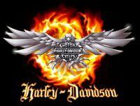 HARLEY DAVIDSON WATCHES @ KARAT FINE JEWELLERY