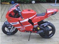 Pegperego 12V Electric Ride On Motor Bike Licensed Ducatti Moto GP