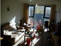 1 bedroom flat in Wandsworth south west London
