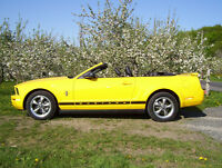 2006 Ford Mustang kit Poney Coupé (2 portes)
