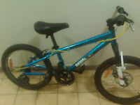 XRANKED HIGH PERFORMANCE BIKE FOR SALE