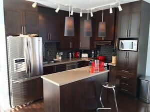 Nice apartment to share in Plateau / Mile-End