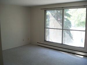 University / Whyte Ave Area Large 1 Bedroom Apartment - Sept 1